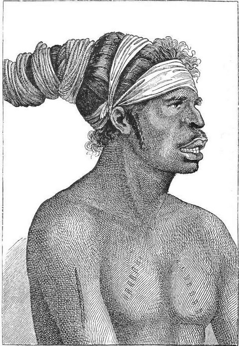 Typical native of New Holland