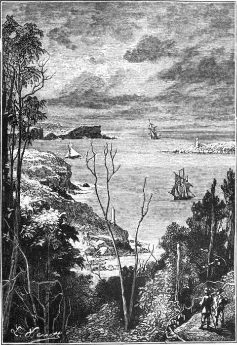 Entrance to Sydney Bay